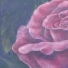 rosen02full